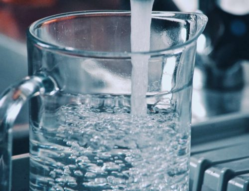 8 curiosità sull'acqua che ti sorprenderanno
